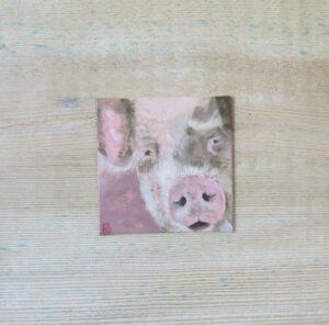 Schwein - 10x10 cm